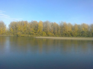 Золотая осень в Уджее