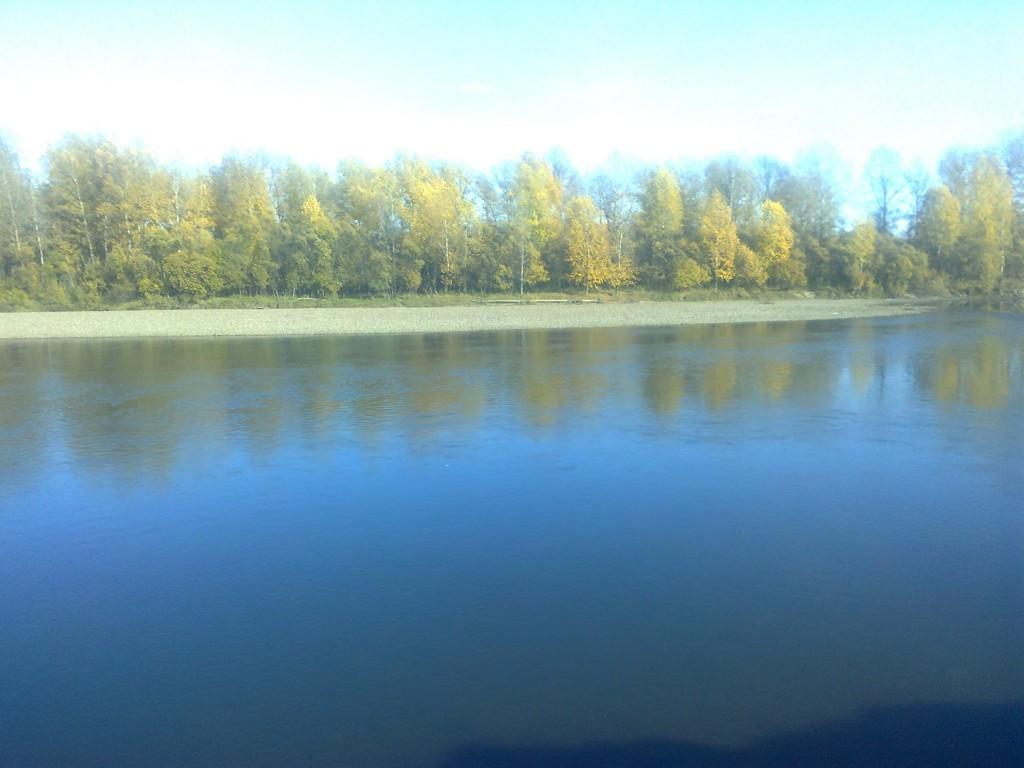Золотая осень на Амыле (Красноярский край)